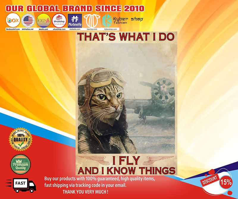 Cat that's what I do I fly and I know things poster